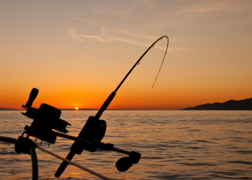 summertime sunset fishing - Come and Take It Sport Fishing